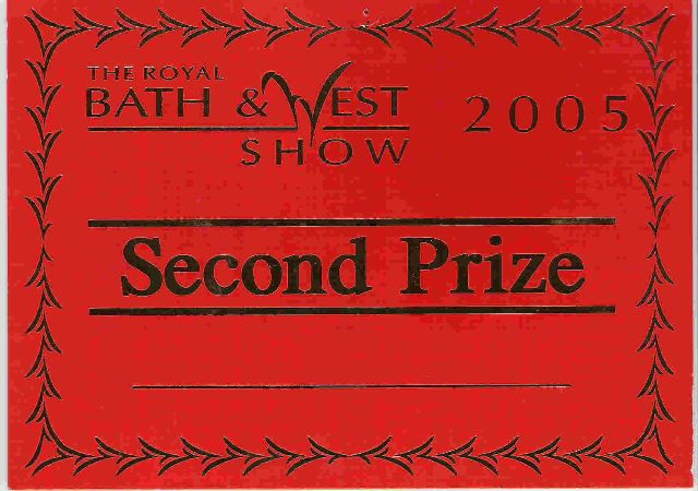 second prize 2005